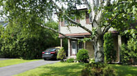 Semi Detached for Rent Steeles/Don Mills