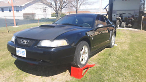 2000 ford Mustang v6 auto