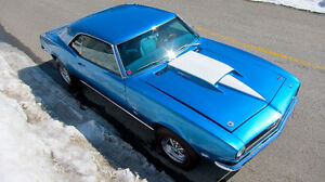MUSCLE CARS & CLASSIC CARS
