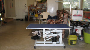 hydraulic pet grooming table