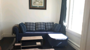 Free fold out couch