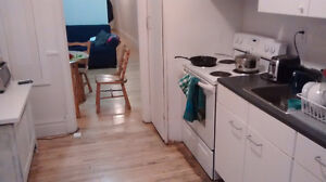 4.5 for summer sublet on Papinea $800.00