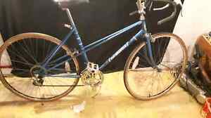 Supercycle womens 10 speed