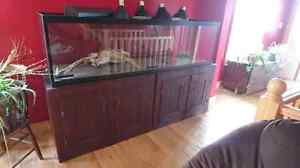 125 Gallon Aquarium with Everything Belleville Belleville Area image 1