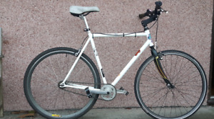 Medium Size ,Single Speed / Polo Bike ( with BMX handlebar )