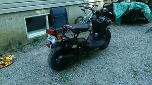 Honda nps50