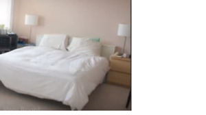 Queen size head board and mattress bed - all in 1