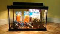 Aquarium 10 gallons et filtreur