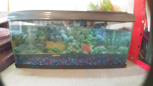 25 gallon fish tank.   $70 OBO