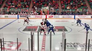 Belleville Senators - 2 tickets Apr 6th - Cleveland Monsters
