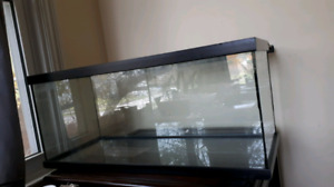 20 gallon long tank with filter/2bulb lamp/ acessories
