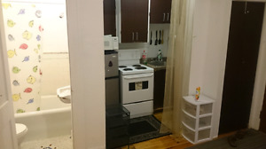 Furnished apartment 1 1/2 in heart of downtown