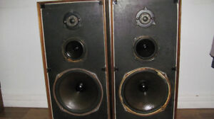 celestion ditton 44 monitor