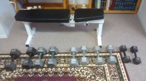 Dumbbells, bench and rowing machine for sale