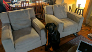 Armchair Pair - Crate and Barrel