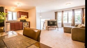 Bright open concept 3 bedroom 2 bath with brand new basement