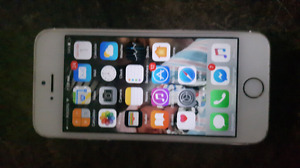 Gold iPhone 5s 16gb with otterbox defender