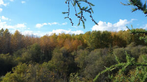 1acre for rent - 130$ Peace  River