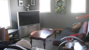 Heat and lights incl. 1 bdr in Wellington near all amenities
