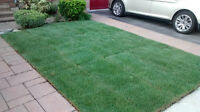 BOOK YOUR SOD INSTALLATION. WE OFFER COMPETITIVE RATES