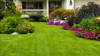 Lawn care services and much more