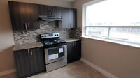 Newly Renovated, Spacious, 3 Bedroom House