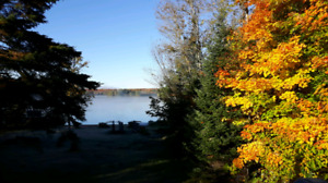 Cottage to rent Thanksgiving