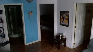 Chambre au sous-sol Saint-Hyacinthe Québec image 7