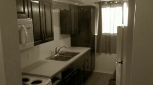 For Rent: Fourplex Downstairs Unit