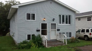 3 Bedroom Basement Apartment in Dieppe