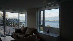 One Bedroom + Sunroom in large 2 bedroom Downtown - Union St