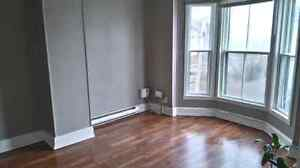 3 Bedroom Unit Downtown at 68 Elm St Near Mckenzie and Oulton's