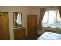 Fantastic Large Double Room to Rent in the Heart of Old Town, Swindon - With Parking/Gardens