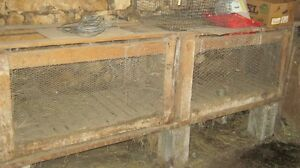 pet cages for sale Peterborough Peterborough Area image 4