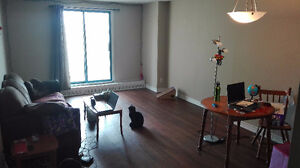 URGENT! 1 bedroom flat close to Downtown, available June 1st