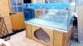Fish tank set for sale