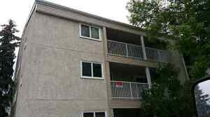 Sherwood Pk Apt. for Rent INCL. UTILITIES - 3 Bed, 1.5 Bath