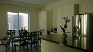 Large ensuite in new house near Hwy404 in Markhmam