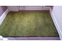 Green large ikea rug