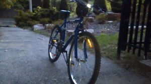 Selling Blue Superscycle sc1800