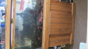 Fish Tank, Stand, Water Circulator etc. Complete set of sale!