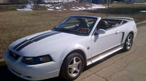 2004 Ford Mustang Convertible - Looking to trade