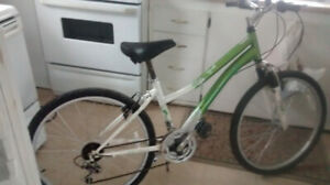 ccm 18 speed mountain bike with shocks