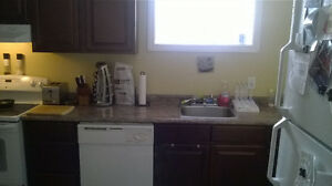 3 bedroom above Ground Apartment available December 1st