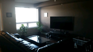Beautiful apt, Spruce Grove, Avail now, price reduced