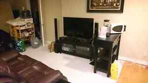 Bachelor / Studio Basement Suite in Taralake