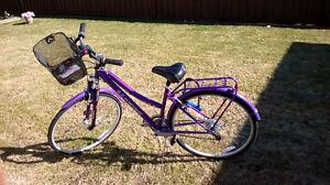 Ladies 21 speed Schwinn Bicycle .. Elliot Lake