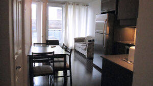 3½ condo for rent 1290$ in Downtown Montreal