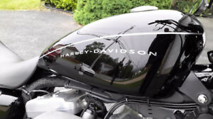 Professional Motorcycle Detailing - Mobile and Affordable