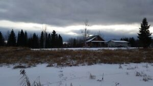 Beautiful moose hunting land, or cottage life